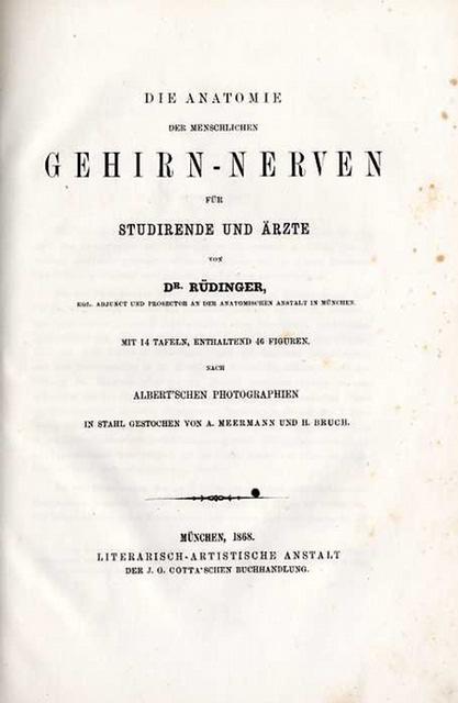 Rüdinger, Nikolaus (Nicolaus) Die Anatomie der menschlichen Gehirn ...