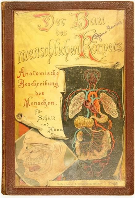 Himmelein, Theodor (Hrsg.) Der Bau des menschlichen Körpers ...